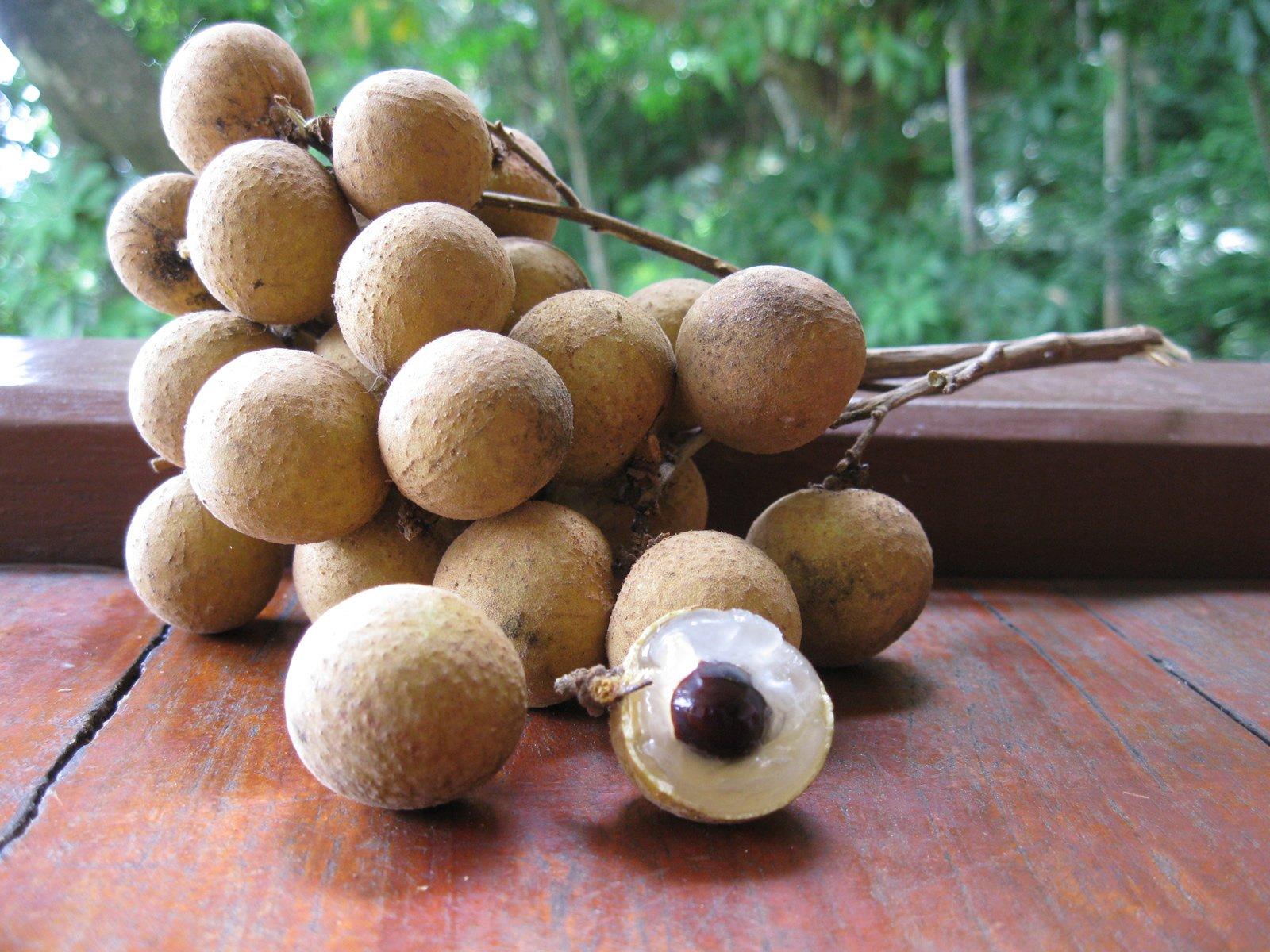 http://fruit-island.ru/images/upload/00002.jpg