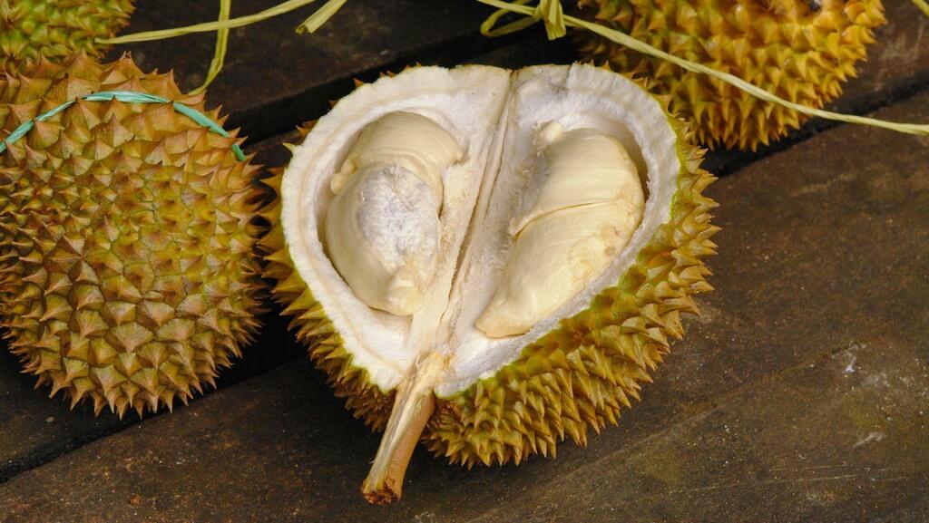 http://fruit-island.ru/images/upload/Durian-4.jpg