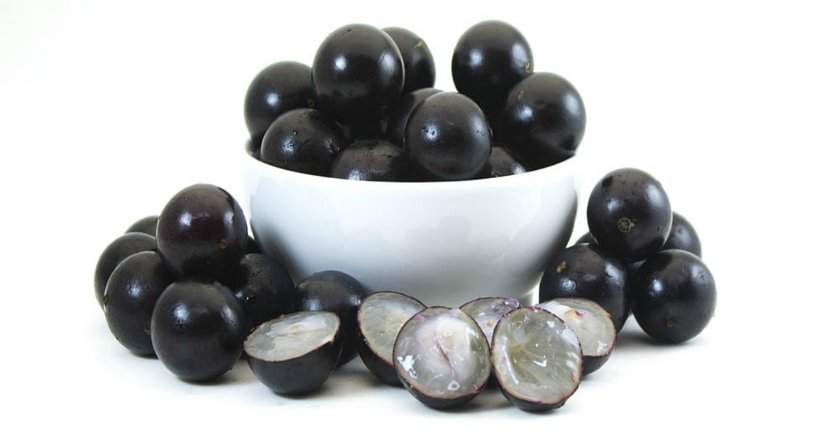 http://fruit-island.ru/images/upload/Jabuticaba-2.jpg