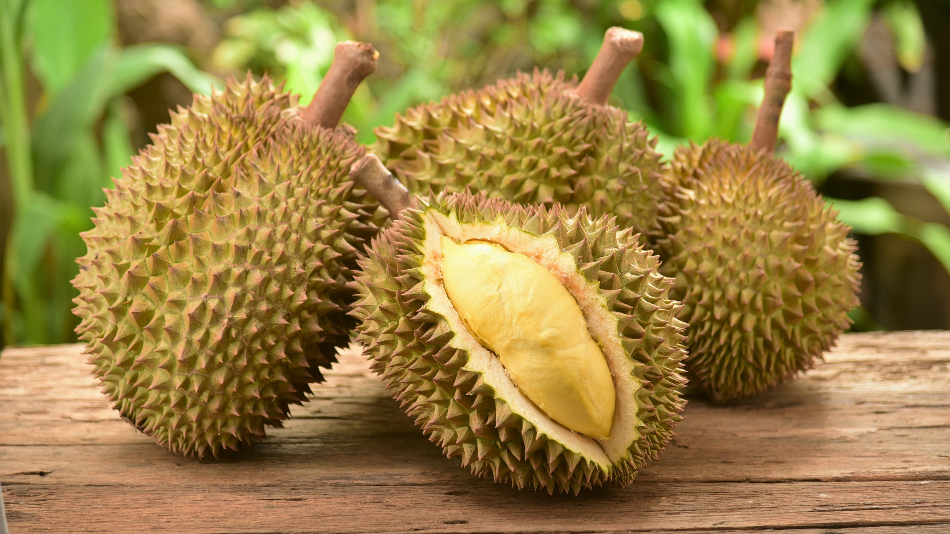 http://fruit-island.ru/images/upload/durian-3840x2160-durian-15342.jpg