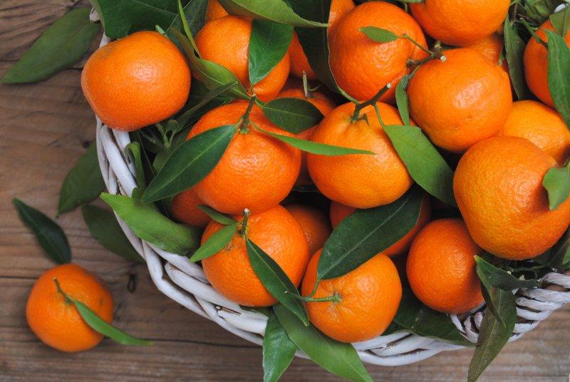 http://fruit-island.ru/images/upload/planiruet-li-vasha-semya-na-etot-raz-sekonomit-na-prazdnovanii-novogo-goda-esli-da-to-kak.jpg